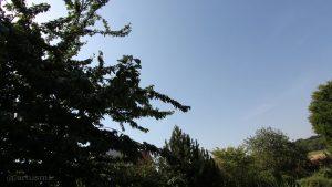Wetterbild vom 04. Juli 2015 um 10:21 Uhr