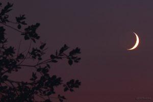 Sichel des zunehmenden Monds mit Erdlicht am 27.09.2014 um 19:59 Uhr