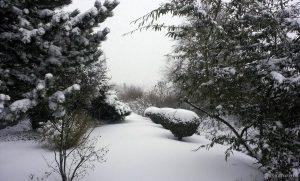 Unser Garten am 27. Dezember 2014 um 15:58 Uhr