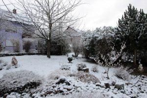 Unser Garten im Winter - 2. Februar 2015 um 08:37 Uhr