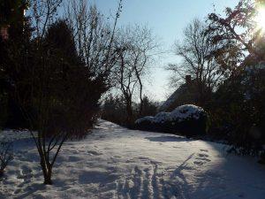 Schnee in unserem Garten am 10. Januar 2009 um 12:37 Uhr
