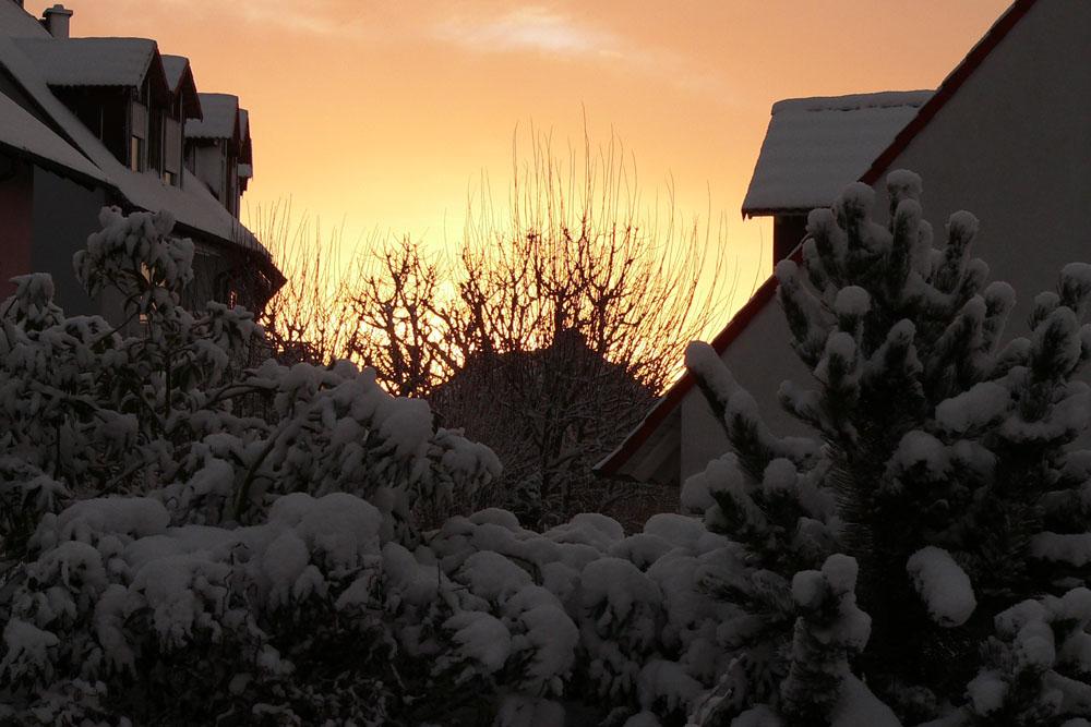 Sonnenaufgang am 10. Dezember 2010 um 08:23 Uhr