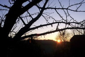 Sonnenuntergang am 19. November 2012 um 16:08 Uhr