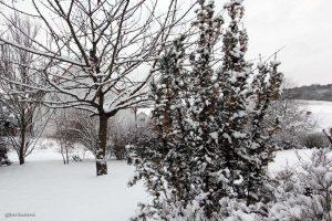 Unser Garten am 17. Januar 2013 um 13:35 Uhr