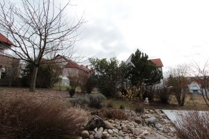 Unser Garten am 3. Februar 2013 um 12:24 Uhr