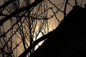 Sonnenaufgang am 26. März 2013 um 07:39 Uhr