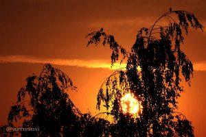 Sonnenuntergang am 27. Juli 2013 um 20:35 Uhr