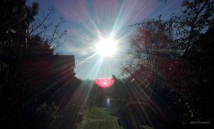 Wintersonne in unserem Garten am 16. Dezember 2013 um 10:27 Uhr