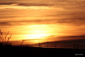 Sonnenuntergang am 20. Februar 2014 um 17:37 Uhr