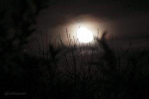 Saturn und Mond am 21. März 2014 um 00:06 Uhr