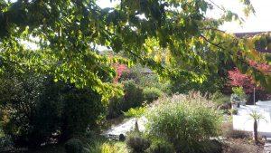 Unser Garten am 9. Oktober 2015 um 14:49 Uhr