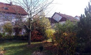Unser Garten am 8. November 2015 um 10:20 Uhr
