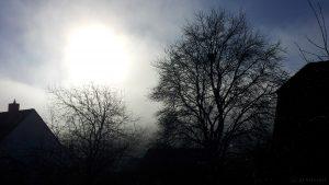 Sonne löst hartnäckigen Nebel auf - 8. Dezember 2015 um 13:20 Uhr