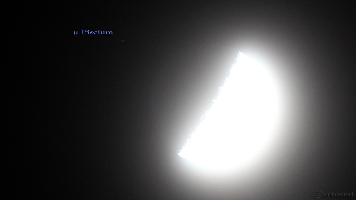 Mond bedeckt μ Piscium – größter zunehmender Halbmond des Jahres