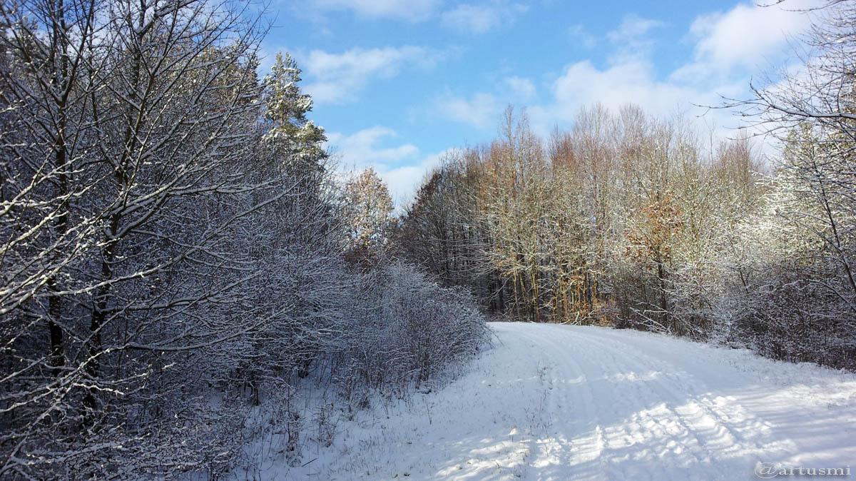 Es gibt ihn doch noch, den Winter in Mainfranken