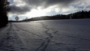 Winter in Mainfranken - 17. Januar 2016 um 15:00 Uhr
