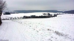 Schneelandschaft bei Eisingen am 19. Januar 2016 um 13:24 Uhr
