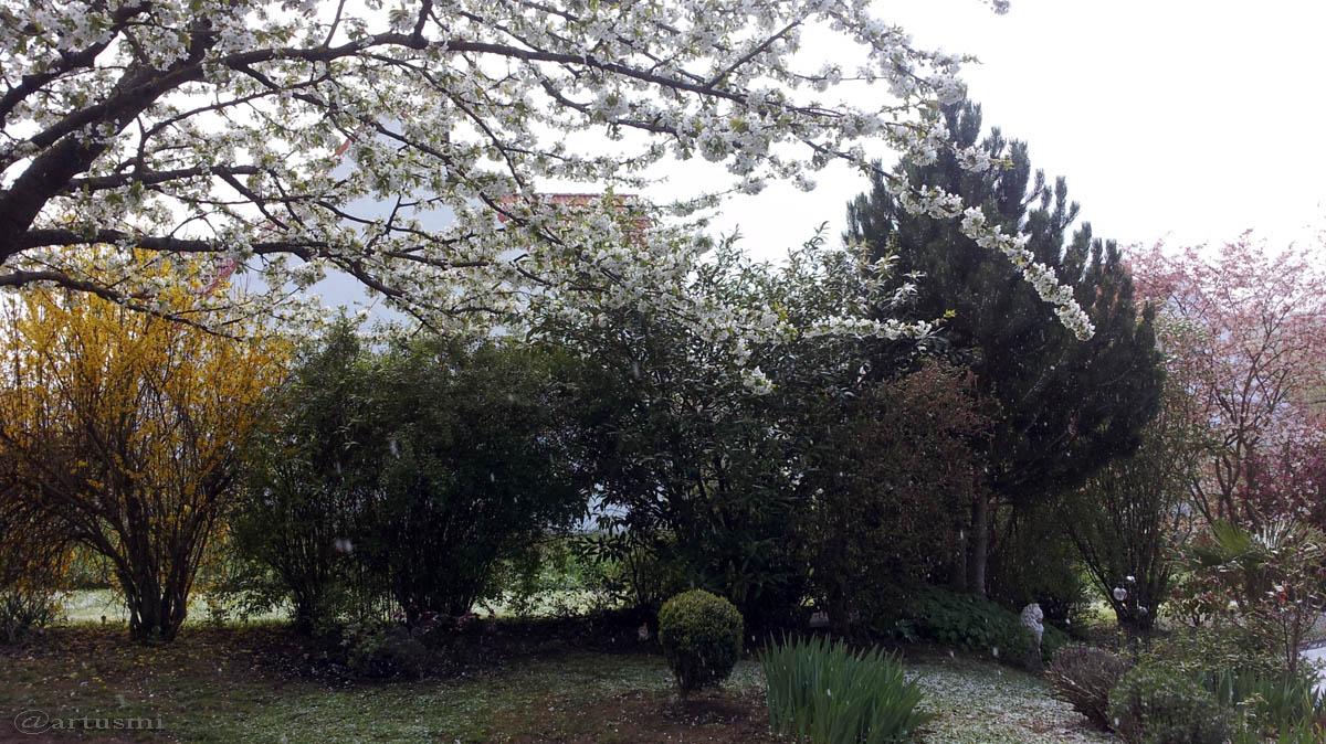 Unser Garten nach Schneeschauer am 25. April 2016 um 10:59 Uhr