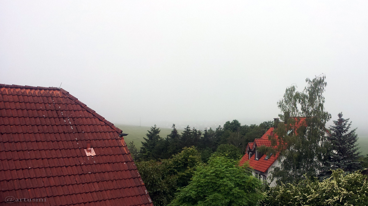 Nebel am 3. Juni 2016 um 09:08 Uhr