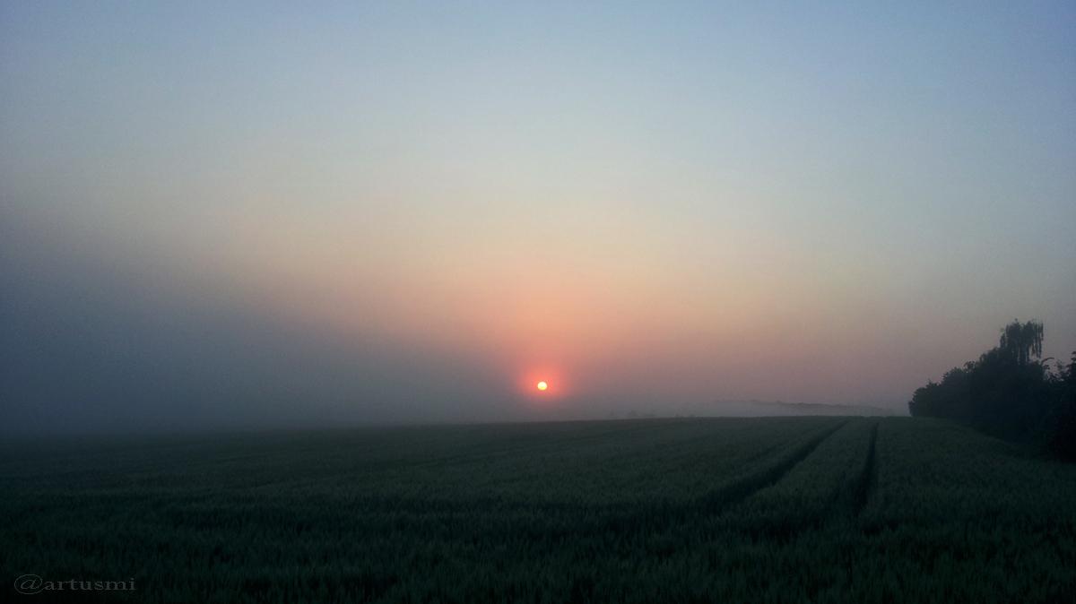 Sonnenaufgang am 6. Juni 2016 um 05:30 Uhr