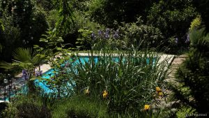 Unser Garten am 6. Juni 2016 um 13:44 Uhr