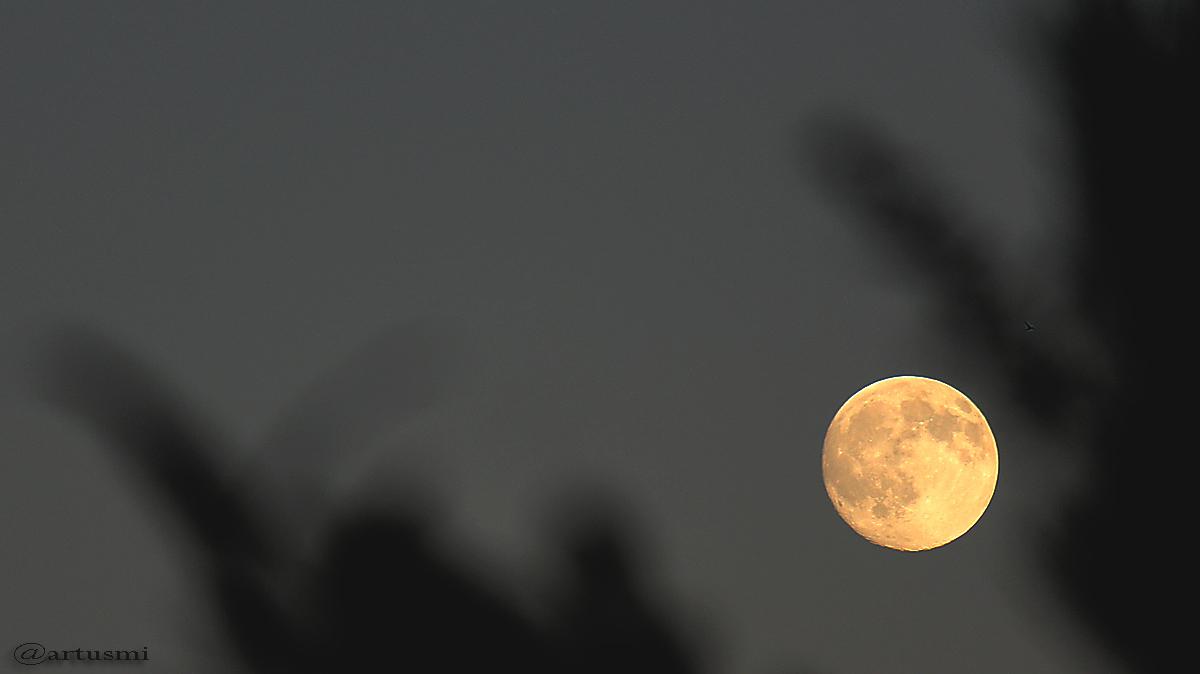 Der Mond am 18. Juli 2016 um 21:18 Uhr