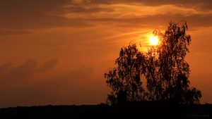 Die Sonne am Westhimmel - 25. Juli 2016 um 20:29 Uhr