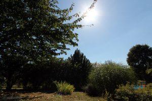 35 °C im Schatten - 28. August 2016, 14:25 Uhr