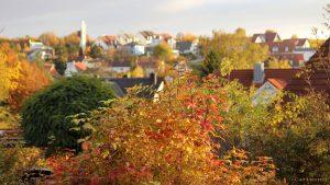 Herbstliches Eisingen am 30. Oktober 2016 um 16:13 Uhr
