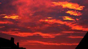 Morgenrot vor dem Sonnenaufgang am 22. November 2016 um 07:37 Uhr