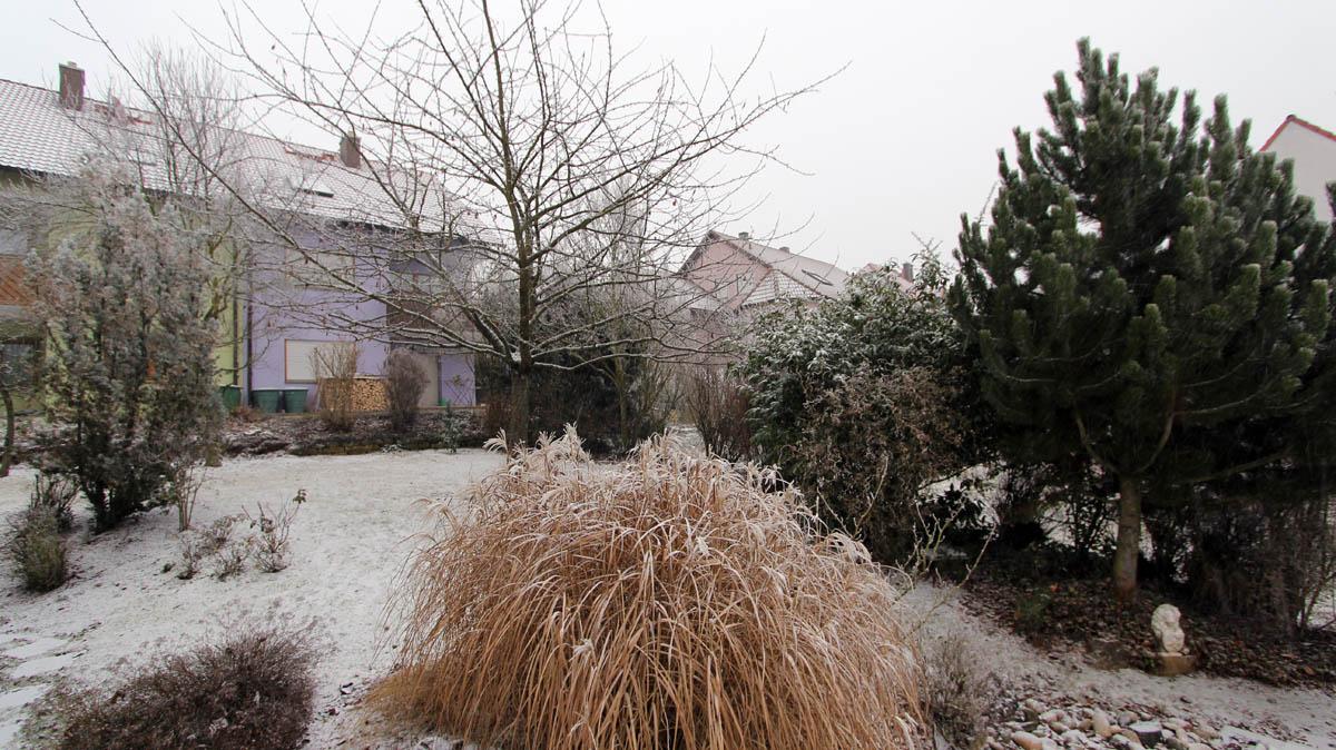 Unser Garten am 2. Januar 2017 um 09:25 Uhr