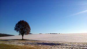 Winterlandschaft am 20. Januar 2017 um 13:20 Uhr