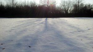 Sonne, Schnee, Licht und Schatten - 22. Januar 2017, 13:06 Uhr