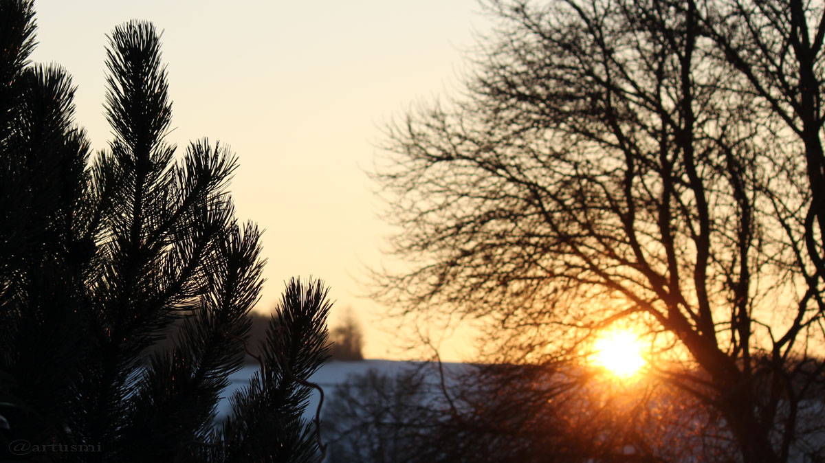 Sonnenuntergang am 26. Januar 2017