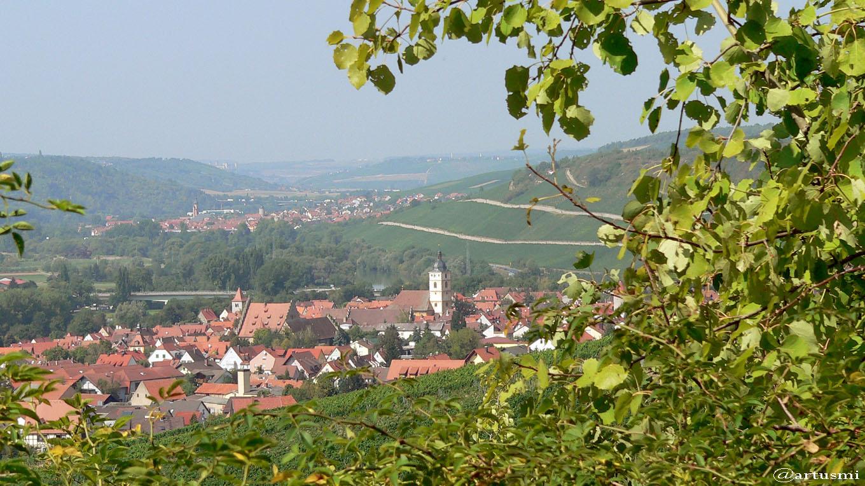 Blick vom Panorama-Höhenweg auf Sommerhausen