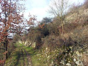 Panorama-Höhenweg