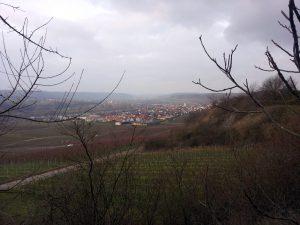 Blick auf Sommerhausen