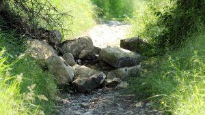Steinschlag auf dem Panoramahöhenweg bei Kleinochsenfurt