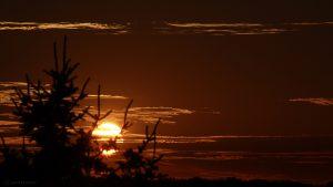 Sonnenuntergang am 29. Juli 2017 um 20:54 Uhr