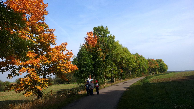 Wirtschaftsweg zwischen Eisingen und Waldbüttelbrunn am 30. September 2017 um 12:09 Uhr