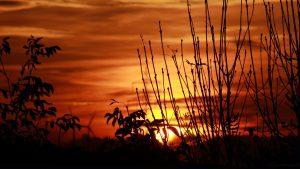 Sonnenuntergang am 12. Oktober 2017 um 18:27 Uhr