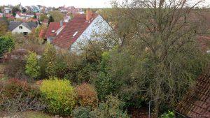 Herbstbild aus Eisingen vom 22. Oktober 2017 um 16:50 Uhr