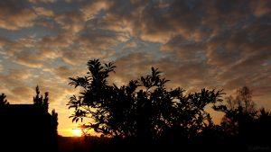 Eisingen Sunset am 3. November 2017 um 16:30 Uhr