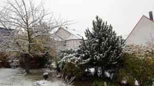Erster Schnee am 12. November 2017 um 15:20 Uhr