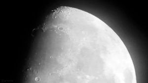 Goldener Henkel am zunehmenden Mond am 28. November 2017 um 18:17 Uhr