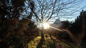 Unser Garten während des Sonnenaufgangs am 26. Dezember 2017 um 09:42 Uhr