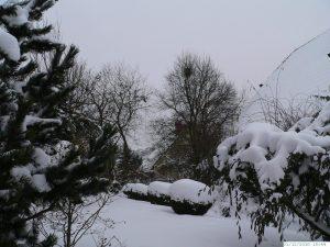 Winter mit sehr viel Schnee in Eisingen am 31. Dezember 2010