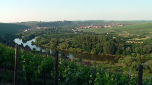 Mainschleife und Weininsel mit den Orten Escherndorf und Nordheim