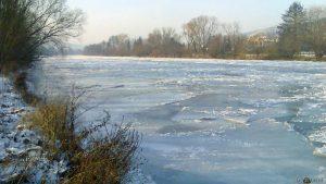 Zugefrorener Main bei Ochsenfurt am 13. Januar 2009 um 14:40 Uhr