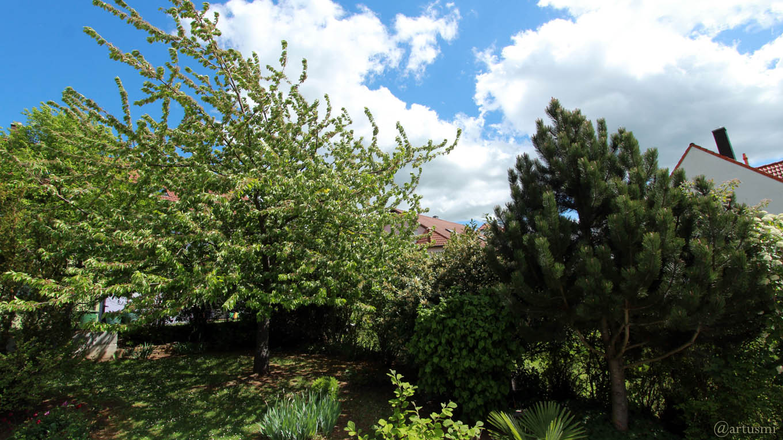 Sehr windig - Unser Garten am 30. April 2018 um 13:28 Uhr